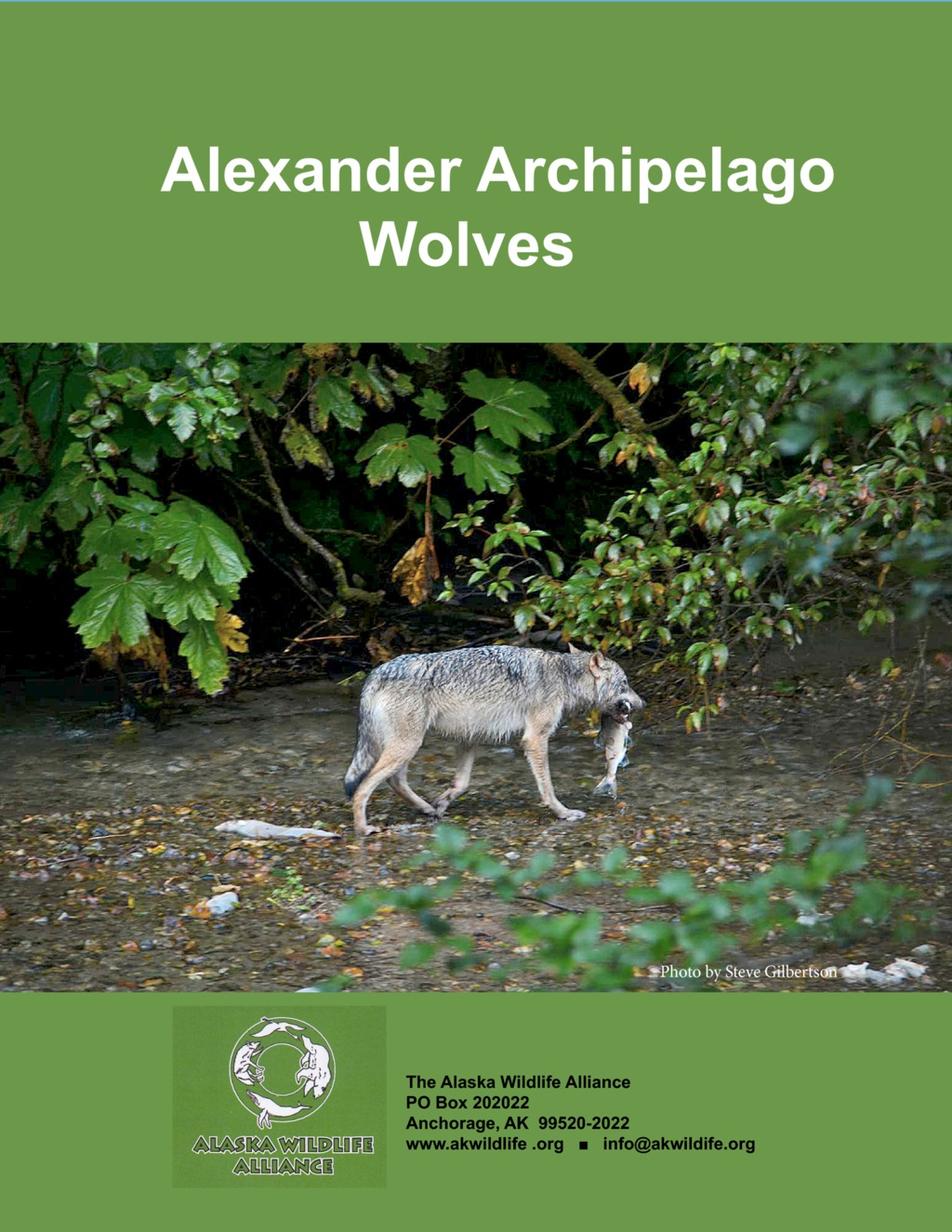 an overview of the wolves Find all available study guides and summaries for the wolves of willoughby chase by joan aiken if there is a sparknotes, shmoop, or.